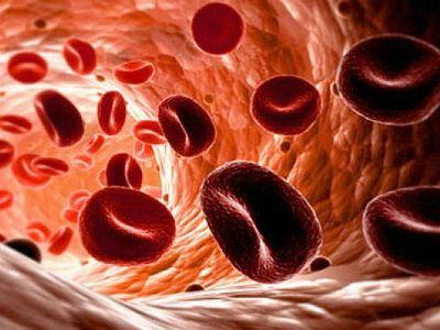 Що означає підвищений рівень білірубіну в крові?