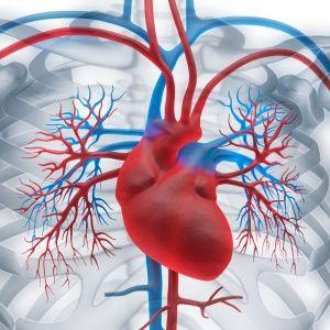 Що таке аневризма аорти серця, як вона лікується?