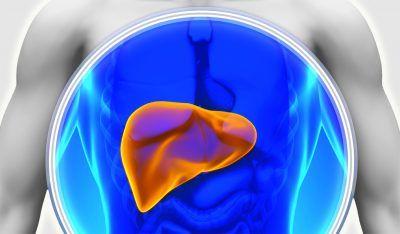 Що таке гепатомегалия і як лікувати це порушення?