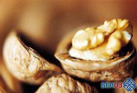 Волоські горіхи на варті здоров`я
