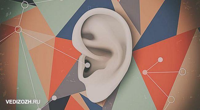 Вправи для слухової пам`яті