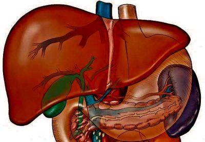 Класифікація препаратів призначених для чищення печінки