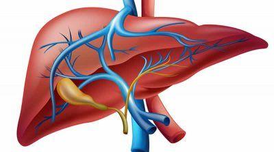 Як проявляється і лікується рак жовчного міхура?