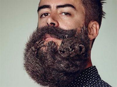 небезпека бороди для здоров`я